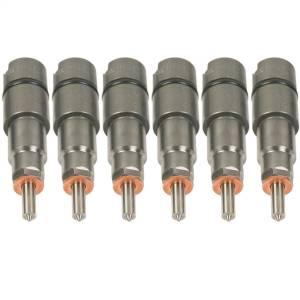 BD Diesel Fuel Injector Kit 1075826